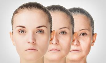 Wrinkle Free Face Serum
