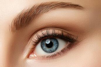 Premium Eyelash Serum